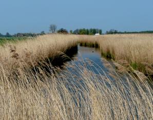Natuur, energie en water